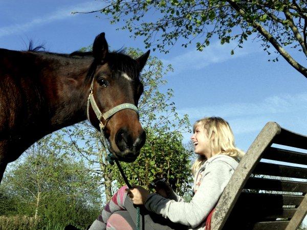 Quand ton cheval s'enferme c'est pas qu'il boude dans son box
