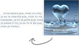 #. Citation n°1