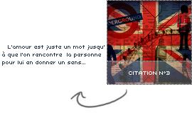 #. Citation n°3
