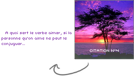 #. Citation n°4