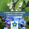 25 mai 2019  Journée des enfants disparus jamais retrouvés