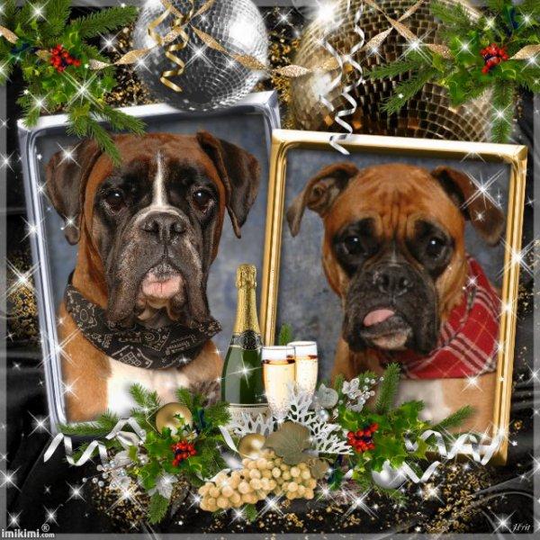 Bonne et Heureuse Année 2012 à tous
