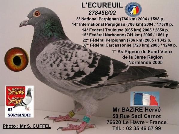Un clin d'oeil aux soeurs de l'écureuil de chez Mr Hervé BAZIRE