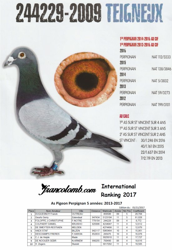 International Ranking 2017 – As Pigeons Perpignan
