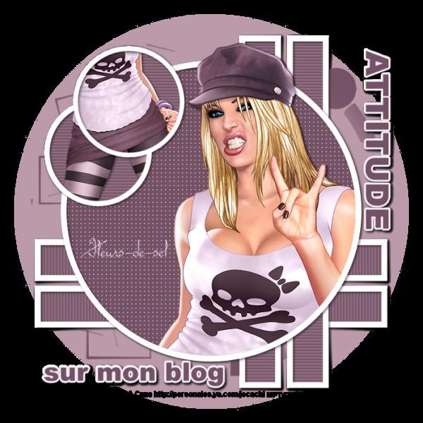 Attitude sur mon Blog
