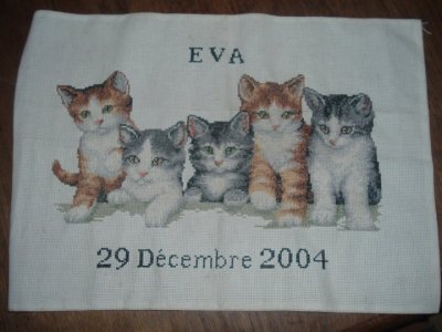 Ouvrage n°6: Chats Eva