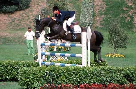 Le Cheval est un grand sportif, un athlète. Mais il est avant tout un être vivant. Un cheval ferait tout pour sauver sont cavalier.