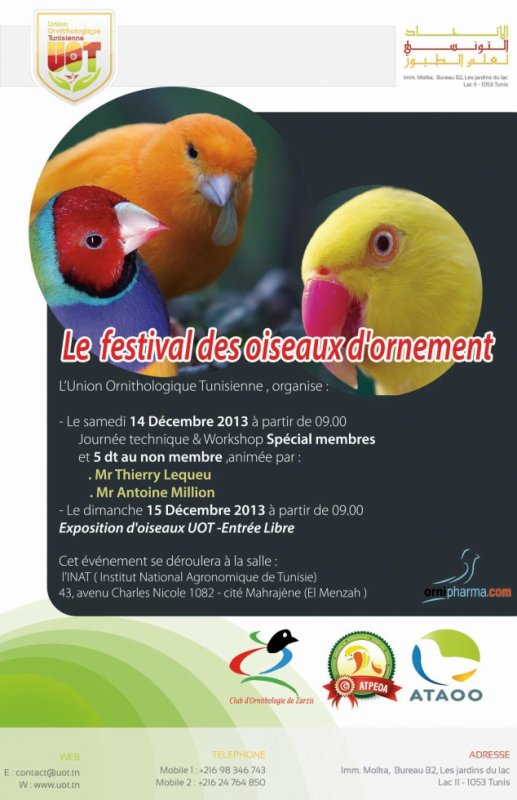 Le festival des oiseaux d'ornement