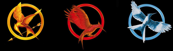 Coffret Hunger Games: La Trilogie