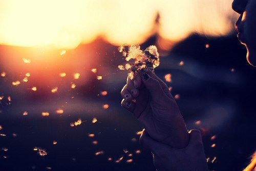 """Chapitre XIV : """"Un seul mensonge détruit la confiance absolue qui, pour certaines âmes, est le fond même de l'amour."""""""