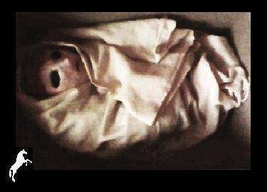 Realistic baby: Gaara of the desert (Argile rouge,07/2011)