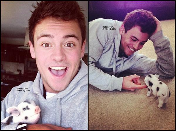 29.03.2013 - Tom nous présente son nouvel animal de compagnie, un petit cohon prénommé Robby-Ray.