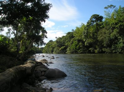 La rivière Macouma