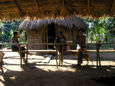 C'est nos maison en Amazonie