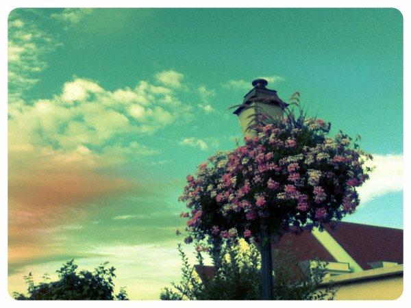 IN THE SKY ...