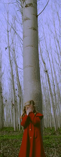 Promenons-nous dans les bois ♪