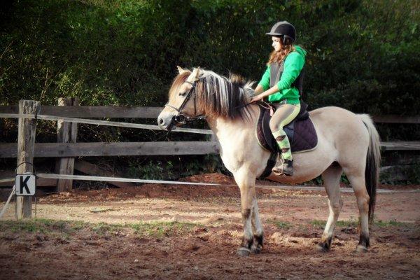 L'équitation ; le seul sport individuel qui se pratique à deux ♥