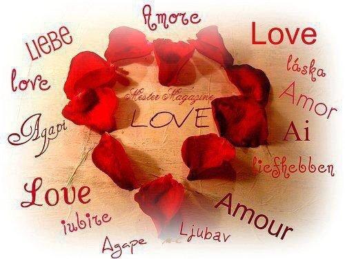 (l) 14 Février.......La St Valentin (l)