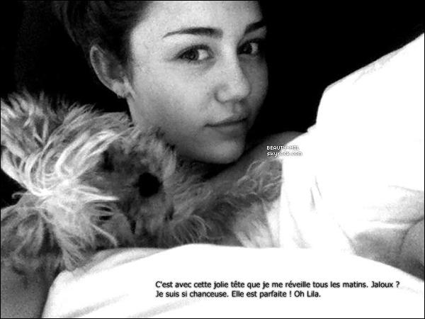 . Miley est de retour sur Twitter, du moins avec son compte @gypsyhearttour qui est celui de sa tournée. Voici quelques photos et Tweets qu'elle a posté récemment..