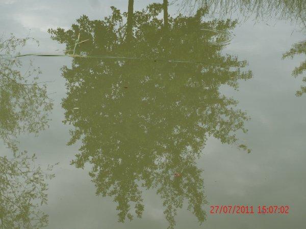 effet de reflet XD