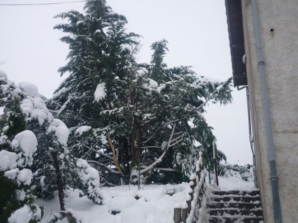 Tombe la neige !!