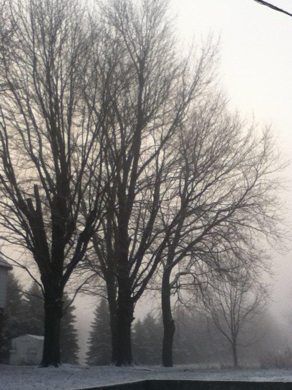 Par delà la brume