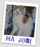 Photo de josi49