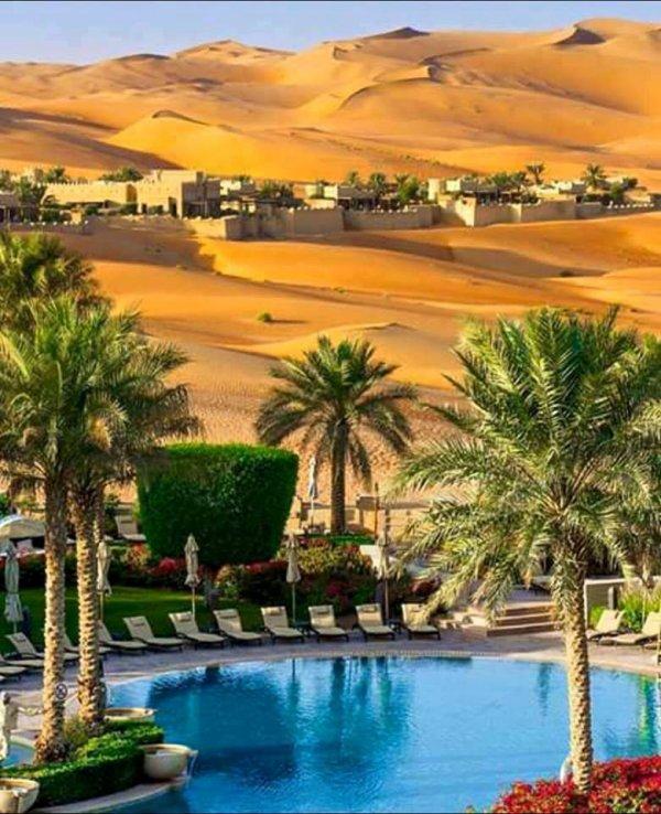La vie dans le desert