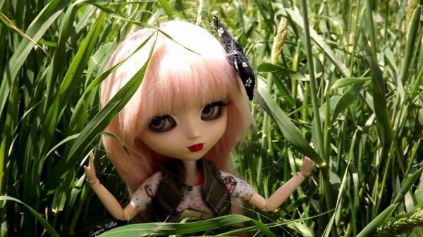 ~Summer Jame~