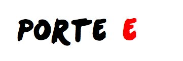 29 avril 2013 - PARIS BERCY - Porte E