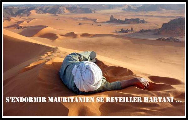 « S'ENDORMIR MAURITANIEN, SE RÉVEILLER HARTANI  »