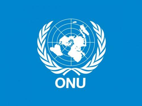 MIGRATIONS : COMMENT ELLES ONT ETE PLANIFIEES ET ORGANISEES PAR L'ONU ?