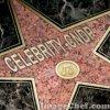 xx-celebrity-cndp-xx