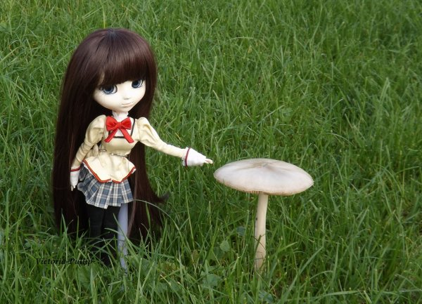 Alice custo ♥