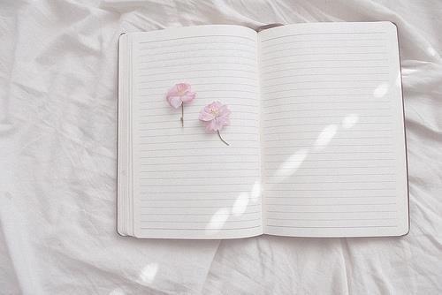 La plus belle des libertés c'est celle qui s'écrit chaque jour.