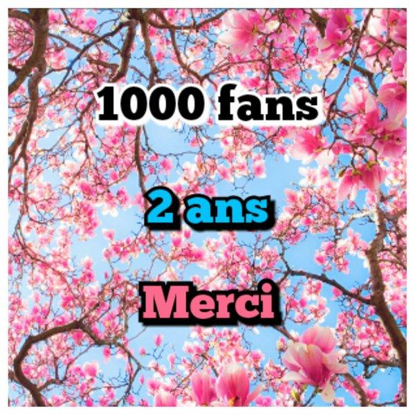 1000 fans, blog star, 2 ans...
