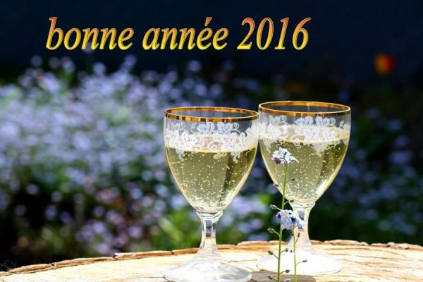 TRES BONNE ANNEE 2016