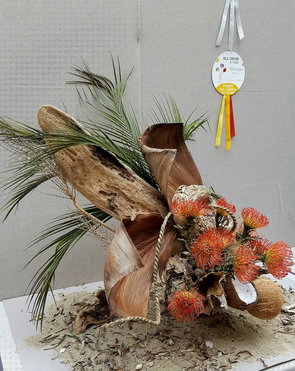 PHOTO DU CONCOURS DE SAN REMO categorie litterature Robinso Crusoe
