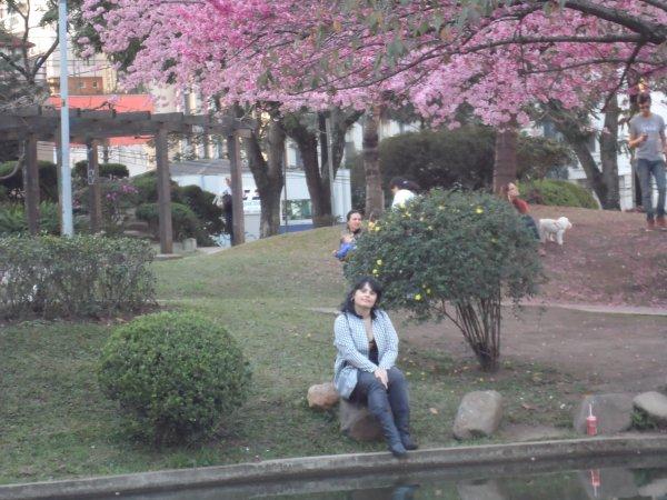 Japan square in Curitiba