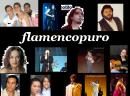 Photo de flamencopuro