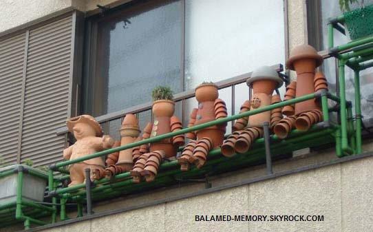 La bande des pots de fleurs