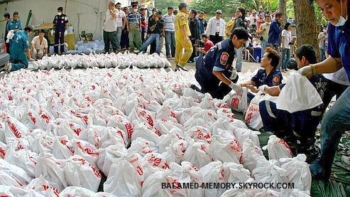 INFOS/INSOLITE : Plus de 2000 f½tus trouvés dans un temple de Bangkok