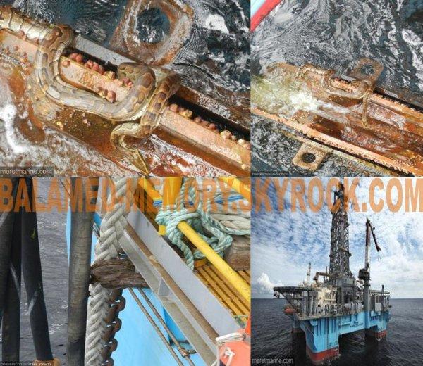 INFO-INSOLITE : Des serpents sur la plateforme Maersk Deliverer