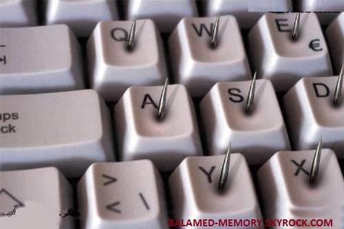 HUMOUR DE LA SEMAINE : Clavier qui ne manque pas de piquant