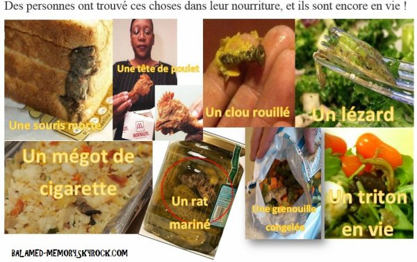 BUZZ : Des personnes ont trouvé ces choses dans leur nourriture, et ils sont encore en vie !