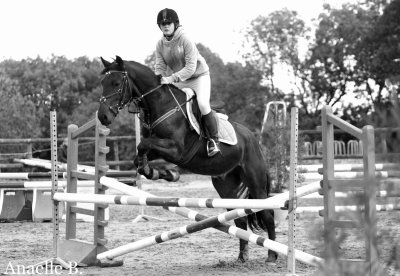 L'Equitation, La Grande Passion ♥