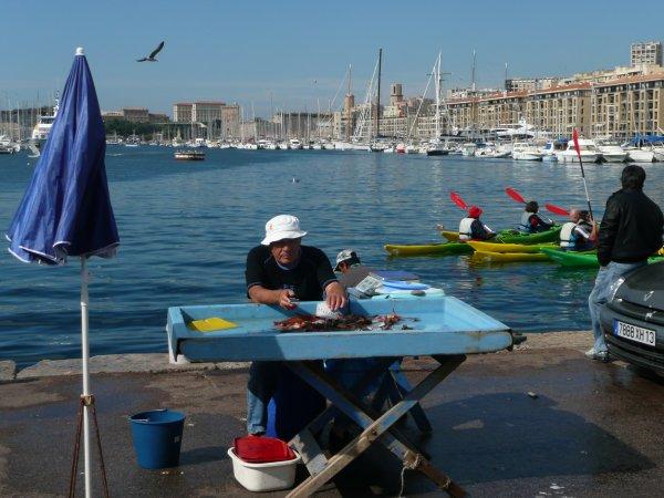 Une image de ce matin sur le vieux port.   photo marseillepassion du 3 oct 2010