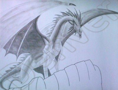 2  Dragon