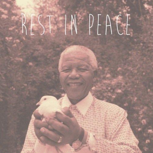 ~ Nelson Mandela ~