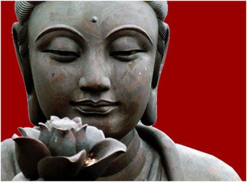 ~ Bouddha ~